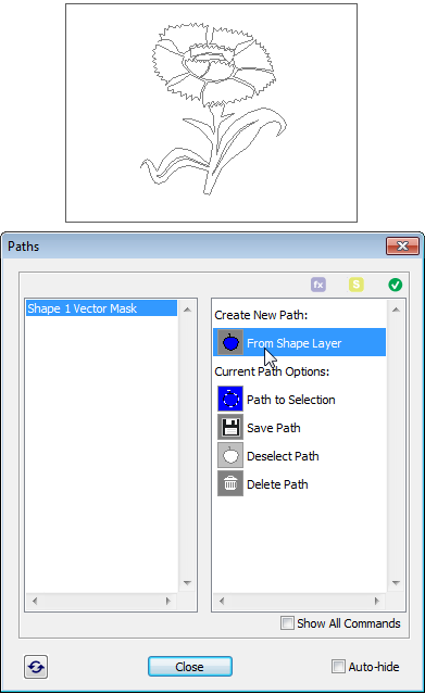 Creating path from shape layer