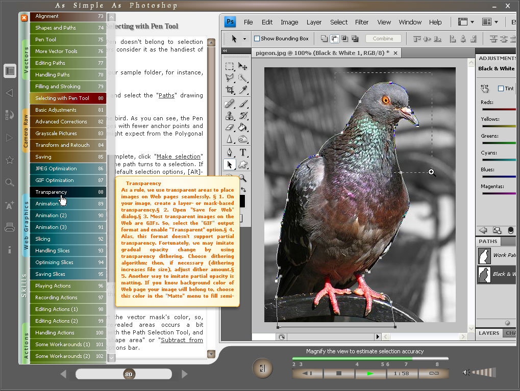 Video-book for Photoshop users dramatically speeding up the learning process. Tutorials are illustrated with movie clips that show around Photoshop. Visual learners will benefit from seeing this program in action.